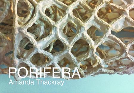 PORIFERA opens at Index Art Center!